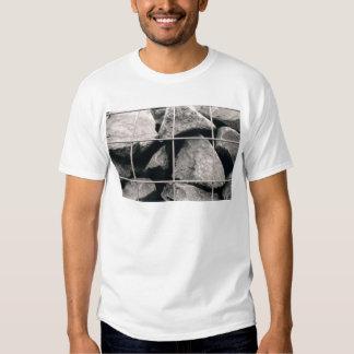 Diseño enjaulado de la foto de las rocas playera