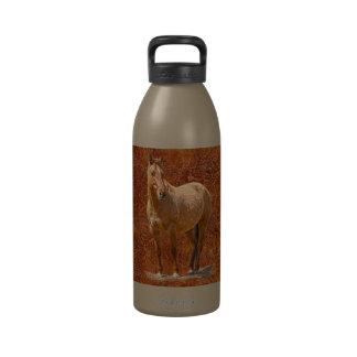 Diseño equino del regalo de los Caballo-amantes ro Botallas De Agua