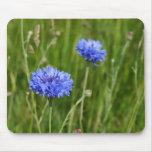 Diseño floral azul hermoso del prado de los Cornfl Alfombrillas De Ratones