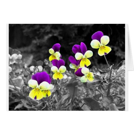 Diseño floral coloreado con efecto tarjeta de felicitación