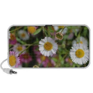 Diseño floral de la fotografía de la flor de la iPod altavoces