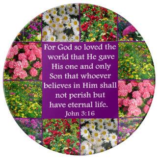 DISEÑO FLORAL DEL 3:16 HERMOSO DE JUAN PLATOS DE CERÁMICA