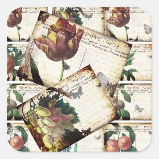 Diseño floral del collage de las postales del pegatina cuadrada