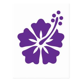 Diseño floral del hibisco tarjeta postal
