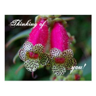 Diseño floral del leopardo postales