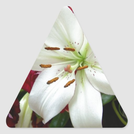 Diseño floral multicolor pegatina triangular