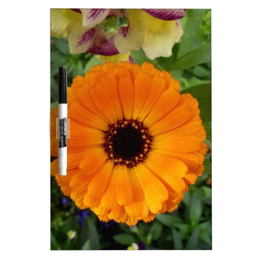 Diseño floral pizarra