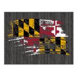 Diseño fresco de la bandera de Marylander Postal