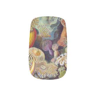 Diseño fresco de los clavos de la seta pegatinas para uñas