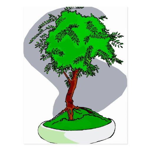 Diseño gráfico de la imagen de los bonsais jovenes tarjetas postales