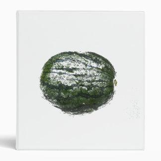 diseño gráfico grunged sandía de la fruta