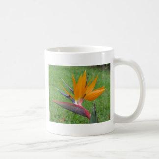 Diseño hawaiano de la ave del paraíso taza clásica