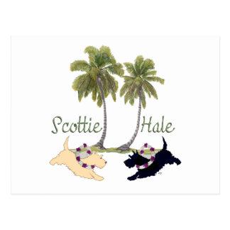 Diseño hawaiano de Terrier del escocés Tarjetas Postales