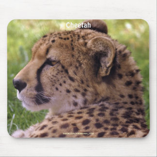 Diseño hermoso de la fauna para los Animal-amantes Tapetes De Ratón