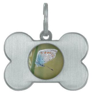 Diseño hermoso de la mariposa placa de mascota