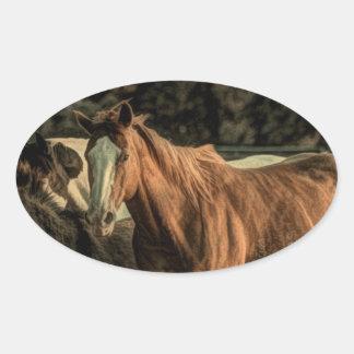 Diseño hermoso del caballo salvaje calcomanías de óvales