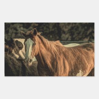 Diseño hermoso del caballo salvaje rectangular pegatina