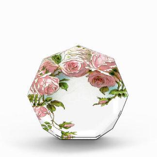 Diseño hermoso del rosa