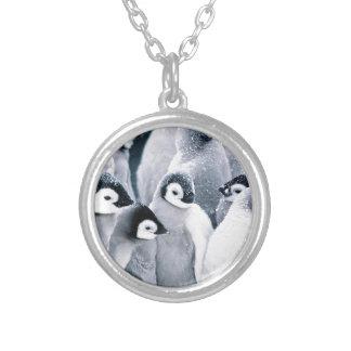 diseño lindo de los pingüinos del pingüino del beb pendientes
