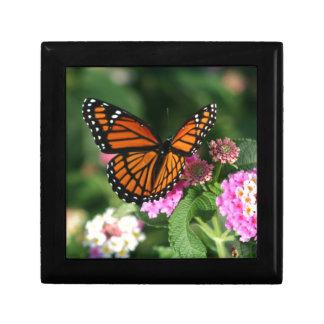Diseño magnífico de la mariposa de monarca caja de regalo