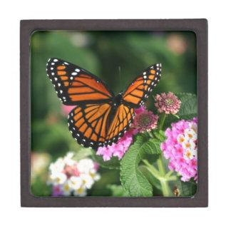 Diseño magnífico de la mariposa de monarca cajas de joyas de calidad