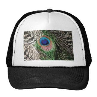 Diseño magnífico de la pluma del pavo real gorras de camionero