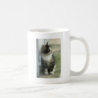¡Diseño magnífico del gatito del tabby - tan Taza
