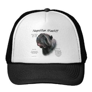 Diseño napolitano de la historia del mastín (negro gorra