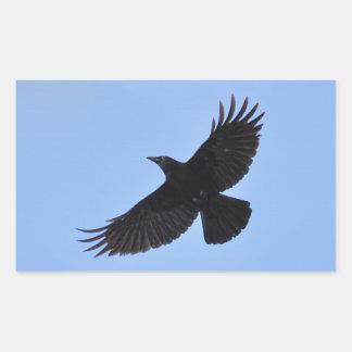 Diseño negro de la foto del Cuervo-amante de Pegatina Rectangular