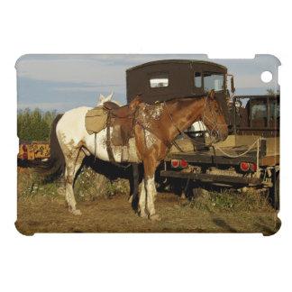 Diseño occidental equino del caballo del Appaloosa