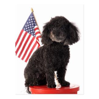 Diseño patriótico del perrito tarjeta postal