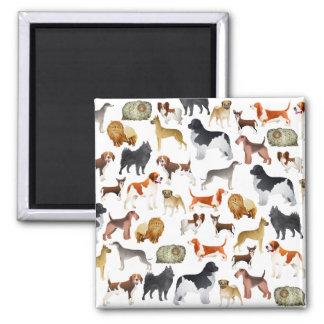 Diseño pedigrí lindo del papel pintado del perro c imán cuadrado
