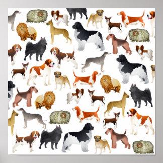 Diseño pedigrí lindo del papel pintado del perro c póster