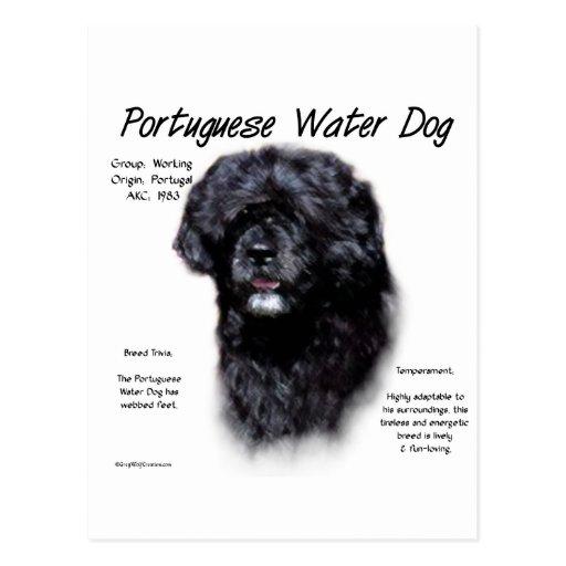 Diseño portugués de la historia del perro de agua tarjeta postal