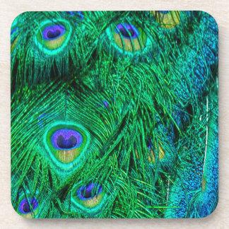 Diseño radiante de la foto de las plumas del pavo posavasos