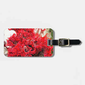 Diseño rojo de la espuma etiquetas maletas