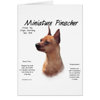 Diseño (rojo) de la historia del Pinscher miniatur Tarjeta De Felicitación