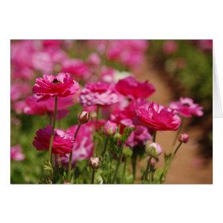 Diseño rosado de Ranunculas por el laurel Tarjetón