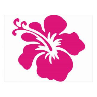 Diseño rosado del hibisco tarjetas postales