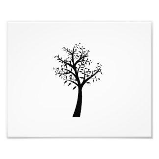 diseño simple eco.png del árbol negro fotografia