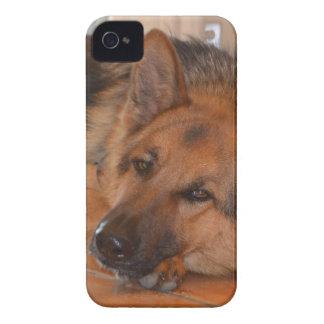 Diseño Stella del de Shepard del alemán Case-Mate iPhone 4 Cárcasas