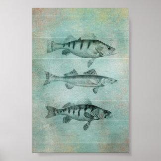 Diseño texturizado madera de los pescados de la póster