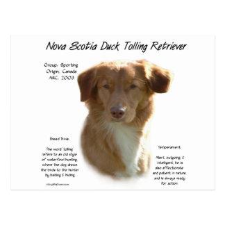 Diseño tocante de la historia del perro perdiguero tarjeta postal
