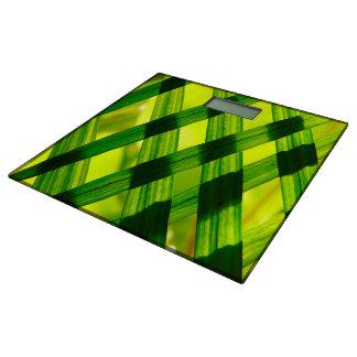 Diseño verde del modelo para la Cuarto de Báscula
