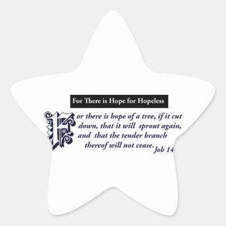 diseños cristianos de la esperanza pegatina en forma de estrella