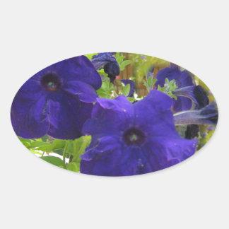 Diseños de color morado oscuro de la petunia pegatina ovalada