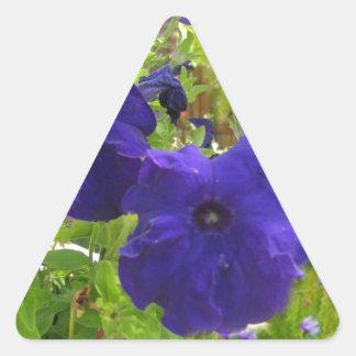 Diseños de color morado oscuro de la petunia pegatina triangular