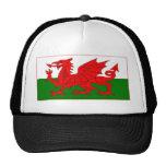Diseños de la bandera Galés Gorra