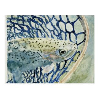 Diseños de la pesca de la captura y del lanzamient postal