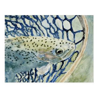 Diseños de la pesca de la captura y del lanzamient tarjeta postal
